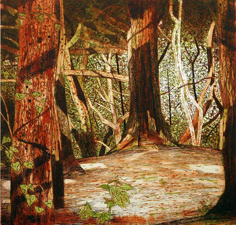 In Shade Dalkey Hill Woodland
