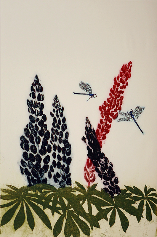 Lupins and Dragonflies