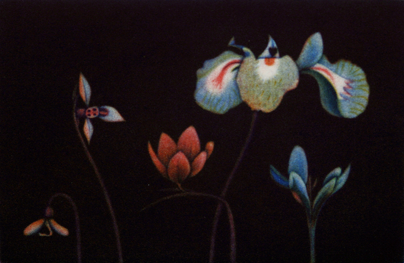 Flowers of Spring III