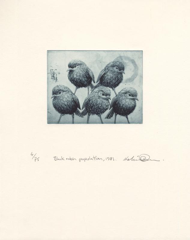 Black robin population, 1981