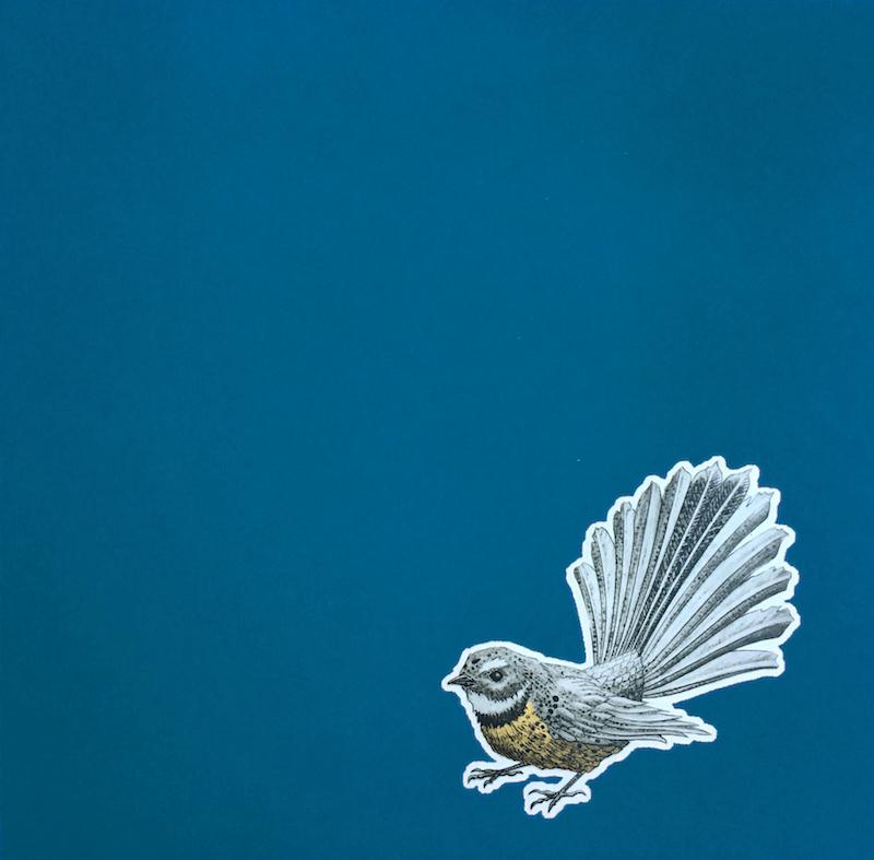 Fantail – Blue