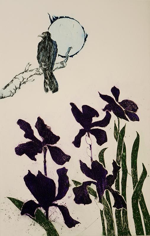 Crow and Iris