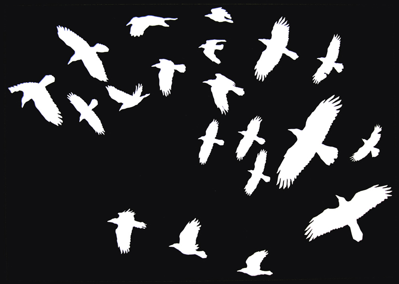 Flock of White Birds