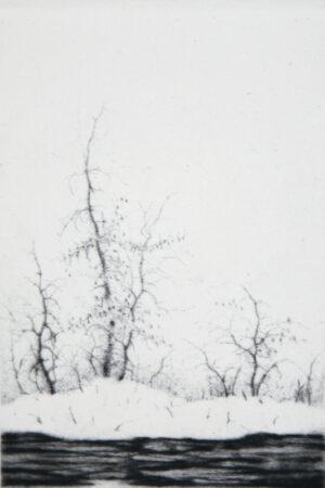 Lars Nyberg - Ice and Island
