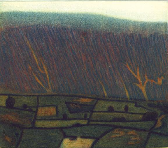 Mountain Fields I