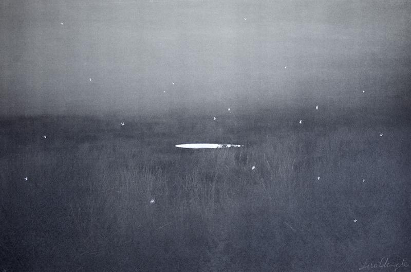 Pond No.23/24