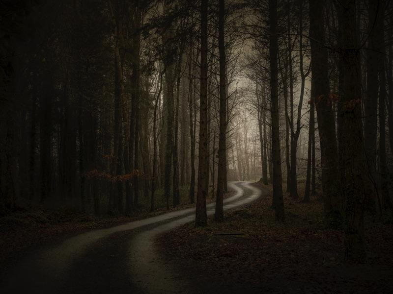 In The Quiet Light #13