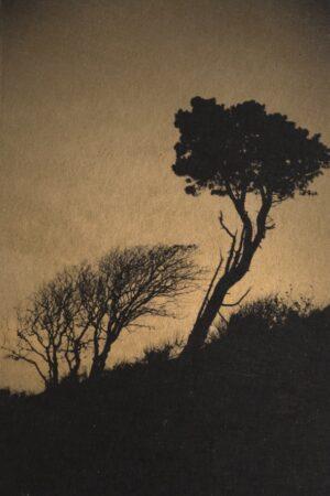 Linda Plunkett - A Gathering Stillness #15