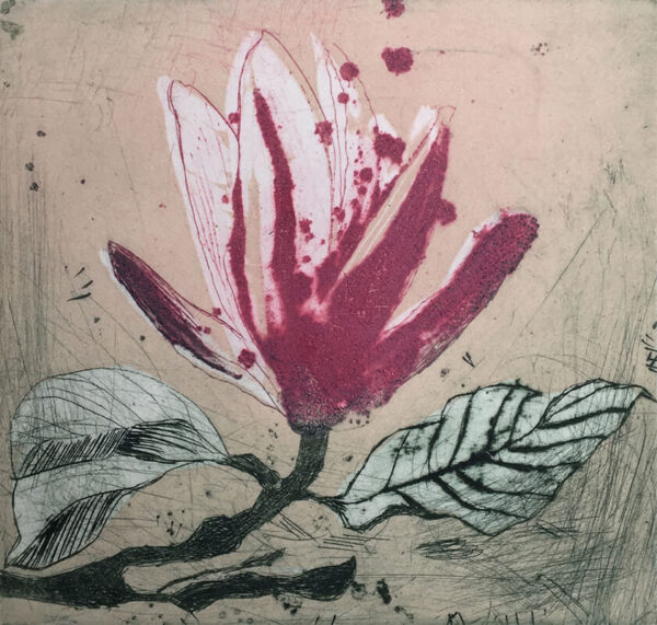 Marta Wakula-Mac - Magnolia xiii