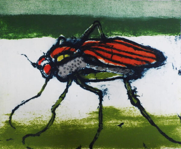 Hughie O'Donoghue - Long-Legged Fly