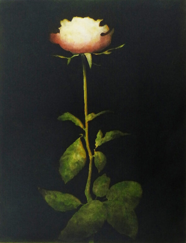 Michael Canning - 1893