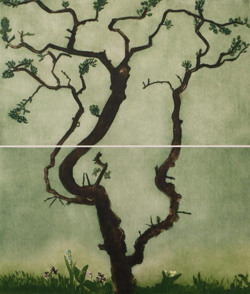 Hawthorn Tree Large
