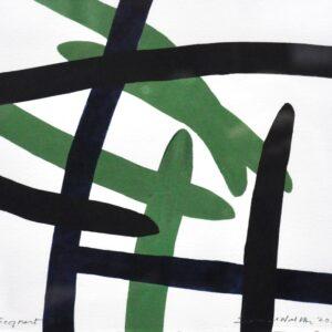 Samuel Walsh - Segment 78