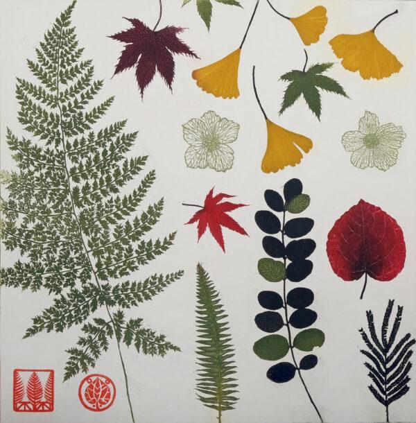 Jean Bardon - Pressed leaves and ferns
