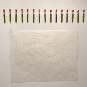 Marta Szymczyk - Ivy Extract