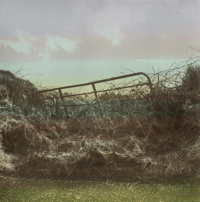 West Cork Gate (i)