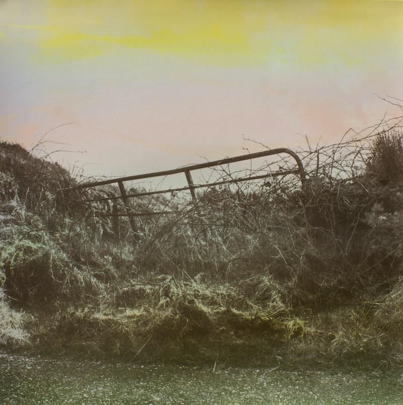 West Cork Gate (i) Yellow